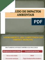 72257925 Estudo de Impactos Ambient a Is