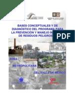 Bases Conceptuales Programa de Manejo Residuos