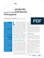 32 Reticolo Peritonite i