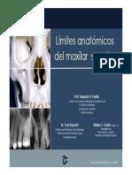 Limites Anatomicos del maxilar Superior Rx