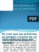 Ensamblaje de Las Proteinas