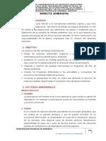 3. Estudio de Impacto Ambiental