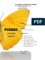 Actividad Forestal Pozuzo 2013