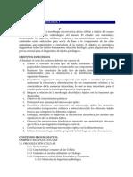 Programa Histologia I