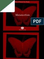 Metamorfósis