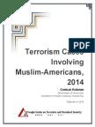 Terrorism Cases Involving Muslim-Americans 2014