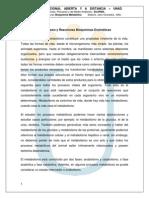 LECTURA_RECONOCIMIENTO_2_BM.pdf