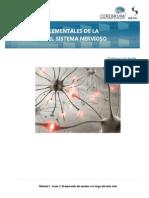 L5-MECANISMOS_ELEMENTALES_DE_LA_PLASTICIDAD_DEL_SISTEMA_NERVIOSO_CENTRAL.pdf