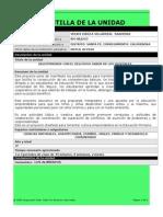 plantilla plan unidad 21-