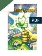 Sérgio R. Franco - Matando a cobra - Libertando-se das Dívidas