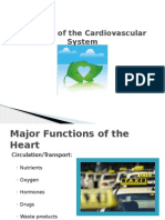 Diseases of the Cardiovascular System