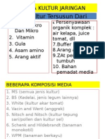 Media Kultur Jaringan
