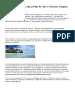 Playas De Veracruz, Aptas Para Recibir A Turistas, Asegura Semarnat