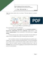 Vias Aferentes0405