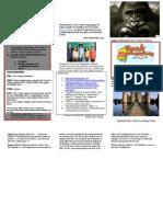 collins  b   development project brochure