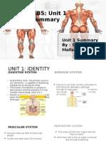 unit1summary