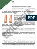 AP-TRANSTORNOS-CIRCULATORIOS-12-03-15(1).pdf