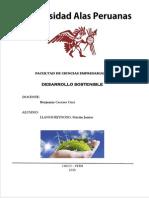 Desarrollo sostenibe.pdf
