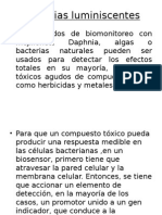 Bacterias Luminiscentes