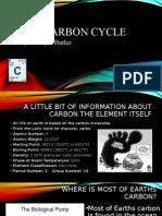 carbon cycle presentation