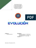 Trabajo Evolución