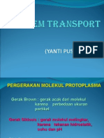 Sistem Transport