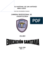 Silabo Educacion Sanitaria 2015
