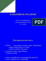 Schizofrene_psychose