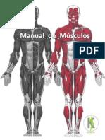 Manual de Músculos