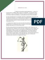 Metabolismo de Calcio y Acondroplasia