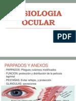 Fisiologia Ocular