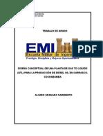 DISEÑO CONCEPTUAL DE UNA PLANTA DE GAS TO LIQUIDS (GTL) PARA LA PRODUCCIÓN DE DIESEL OIL EN CARRA.doc