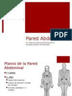 20120228_pared_abdominal.pptx