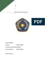 6h_analsis_laporan_keuangan_pt_asuransi_bintang_amp_pt_asuransi_panintbk2.docx