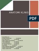 Anatomi klinis