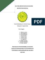 Laporan Praktikum PK Kelompok 4 Uro