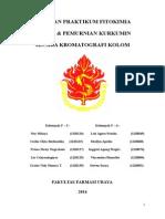 LAPORAN FITO kurkumin F5F6.docx