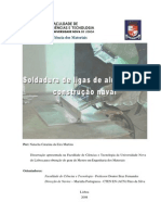 Martins_2008.pdf