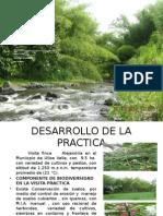Act6 Colborativo1 Daniel Franco