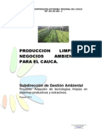 Cartilla Prouccion Limpia