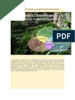 Las Bases Cientificas de La Agricultura Ecologica
