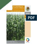 Biofertilización en México