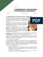 Guía Procesos Cognitivos