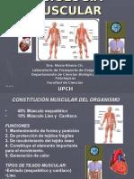 Fisiologia muscular