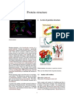 Protein structure.pdf