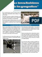 Revista Canina Página 13
