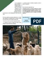 revista canina_Página_15.pdf
