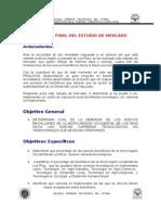 Informe Final Del Estudio de Mercado (1)