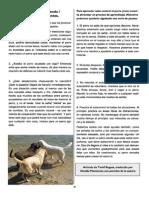 Revista Canina Página 30