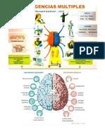 Inteligencias Multiples Cerebro